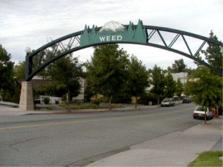 Weed Entry Arch