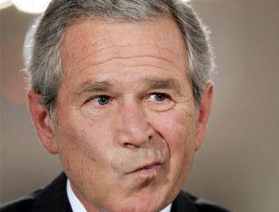funny-bush