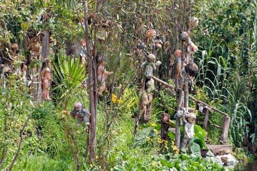 Lots of Dolls - La Isla de la Munecas