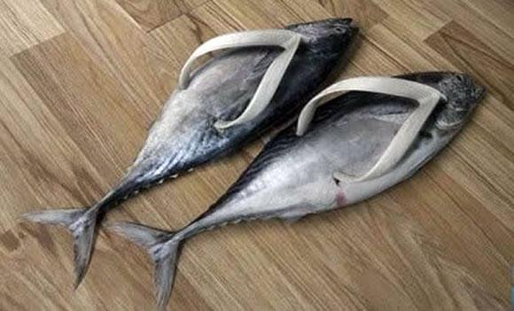 Fisch-Flops