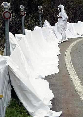 Pana Wave - White Sheets 2