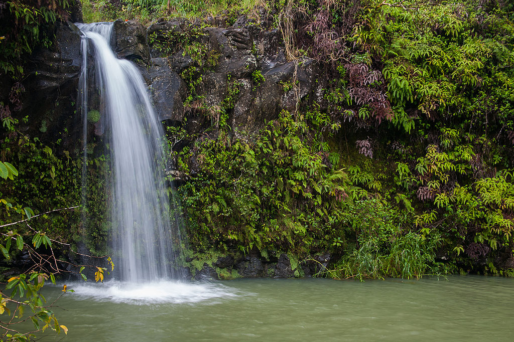 Driving the road to Hana is one of the many Fun things to do on Maui ... photo by CC user Frank Kovalchek on Flickr