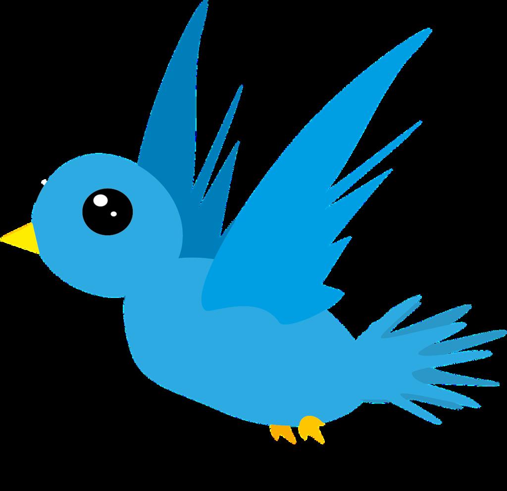 bird-548654_1280