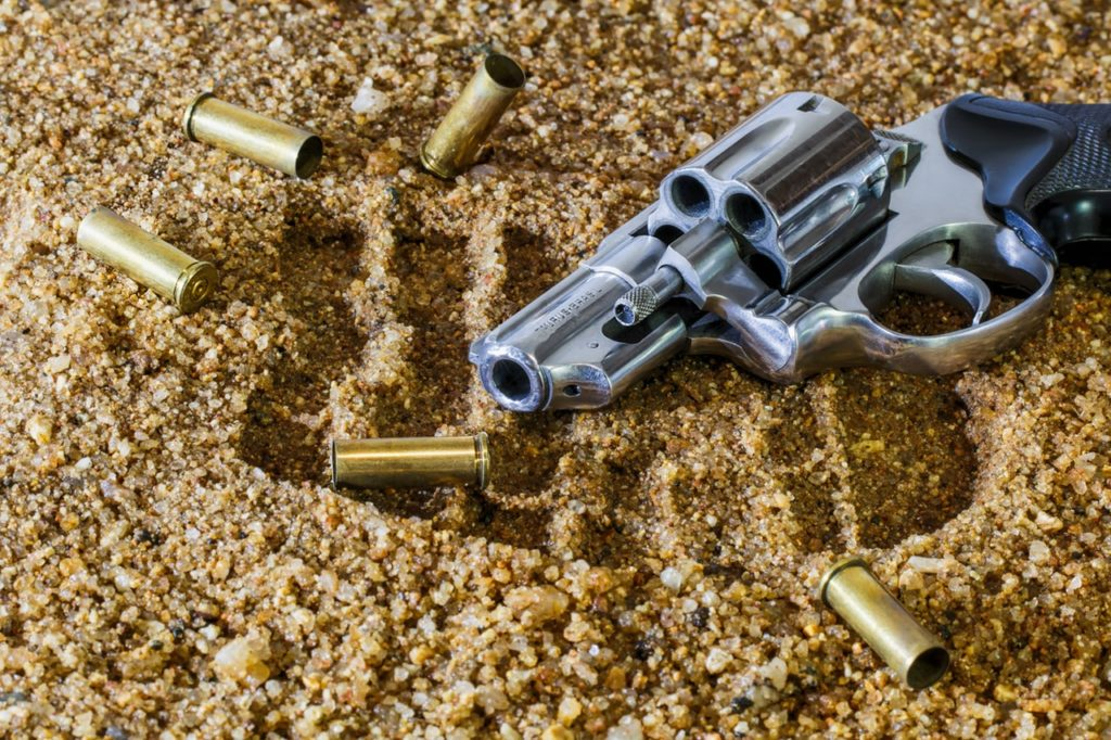 What is the the Right Gun Purchase for someone like yourself?
