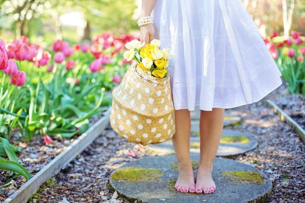 Renovating Your Garden