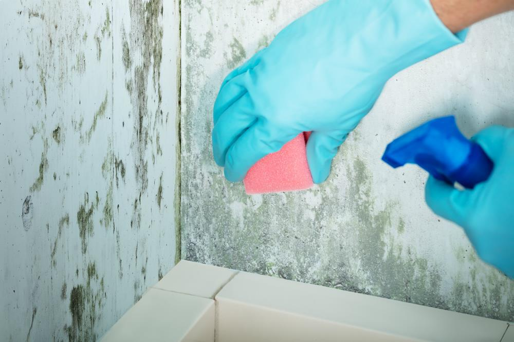 7 Home Repair Tasks to Finish Before Summer Hits - Odd Culture